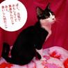【8/2東日本橋】超絶元気で楽しい!♡ルークくん サムネイル5