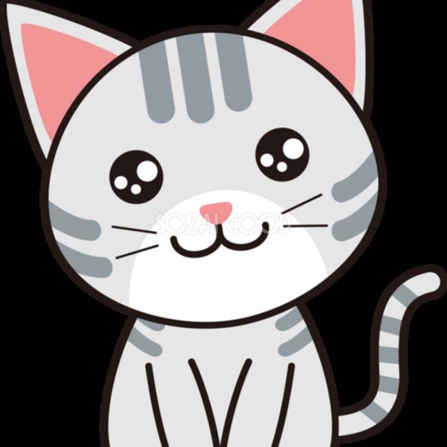 RINN猫のカバー写真