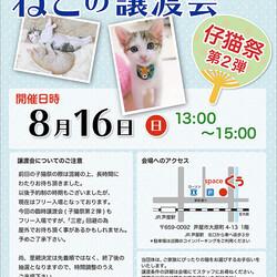 ねこの緊急譲渡会〜仔猫祭@JR芦屋駅から徒歩3分