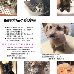 保護犬猫の譲渡会を開催します。