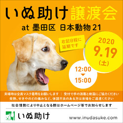 いぬ助け譲渡会 at 墨田区日本動物21