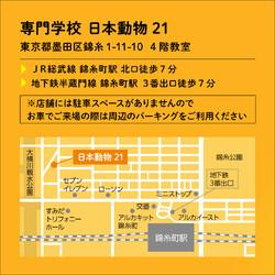 いぬ助け譲渡会 at 墨田区日本動物21 サムネイル2