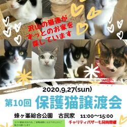 第10回保護猫譲渡会in山口県