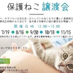 【野崎参道商店街】第25回里親譲渡会 サムネイル1