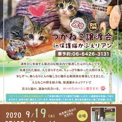 つかねこプチ譲渡会in尼崎(保護猫かふぇリアン)