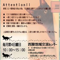 瀬戸ねこ譲渡会(=^x^=)