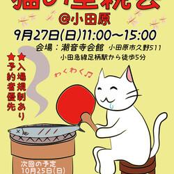 猫の里親会 in 小田原 (小田急線足柄駅)