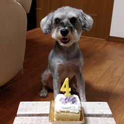 「4歳の誕生日おめでとう(^^♪」サムネイル1