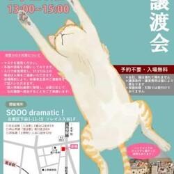 9/27(日)入谷☆保護猫譲渡会