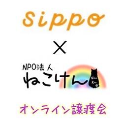 ねこけん×sippoオンライン譲渡会 サムネイル1