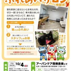 保護猫たちとのふれあいサロン(相談会)
