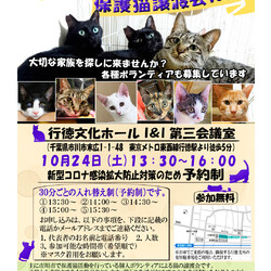 10/24(土曜)イコール保護猫譲渡会(予約制)