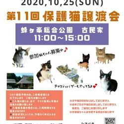 第11回保護猫譲渡会in山口県