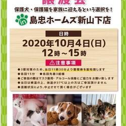 保護犬 保護猫 譲渡会inホームズ新山下店