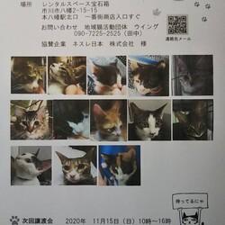 10/11本八幡駅北口一番街譲渡会開催