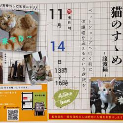 【猫のすゝめ 】~譲渡編~    part4