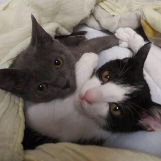 仲良し姉妹♡