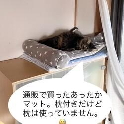 枕付きマット