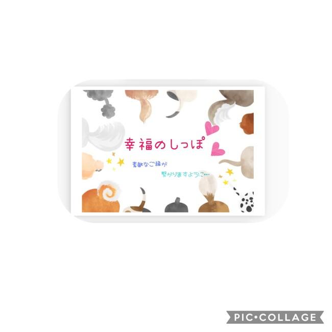 Happy☆Shippo 幸福のしっぽのカバー写真