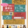 11.29予約制藤井寺保護猫譲渡会参加猫 サムネイル3