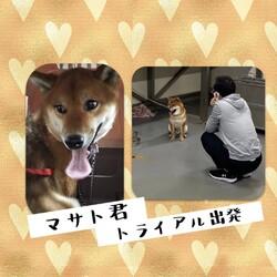 「倉敷市保健所譲渡会報告→全頭卒業!」サムネイル2