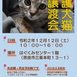 奈良市保護犬猫譲渡会