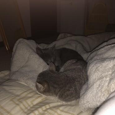 一緒に寝てくれました!