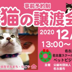 猫の譲渡会☆6団体出場☆矢場町駅