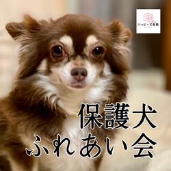 大倉山プチハピふれあい会