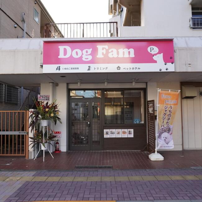 Dog Famのカバー写真