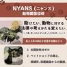 動物愛護団体NYANS:吉村 さん
