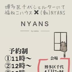 福岡NYANS 譲渡会