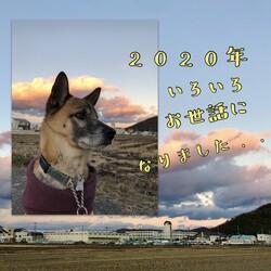 感謝の2020年、そして・・