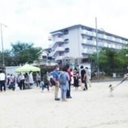 「犬の合宿所in高槻」の里親募集会(予約制)