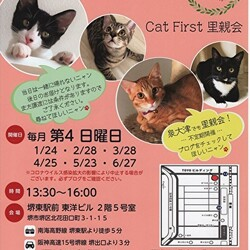 泉大津市 もか動物病院 保護猫の為の里親会 主催Cat First