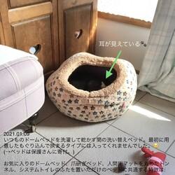 洗い替え猫ベッド