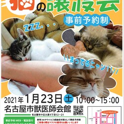 名古屋市動物愛護センター譲渡ボラの譲渡会