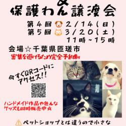 「譲渡会☆お知らせ☆2/14(日)」サムネイル1