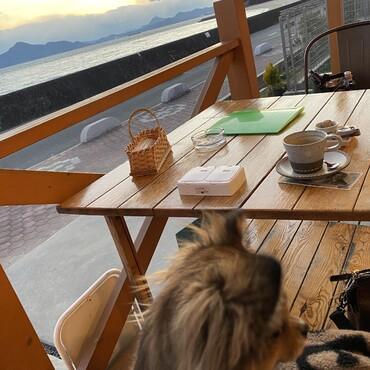 夕刻の冬空の元、ドッグラン後のひと休み、、キリリと寒いね!