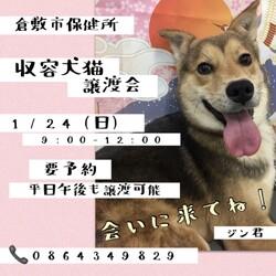 「倉敷市保健所譲渡会直前!」サムネイル1