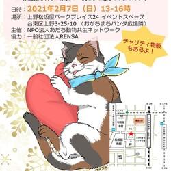 保護猫たちの譲渡会in上野