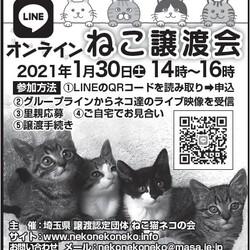 LINEオンライン譲渡会(LIVE)!! サムネイル3
