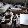 緊急!ゴミだらけの倉庫にリリースするさび猫 サムネイル4