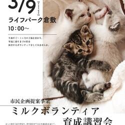 子猫ミルクボランティア講習会 サムネイル1