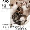 子猫ミルクボランティア講習会