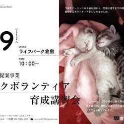 子猫ミルクボランティア講習会 サムネイル2