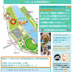 保護犬ご縁探し会IN愛知県東海広場