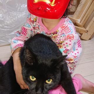 黒猫のオスクロくん里親募集