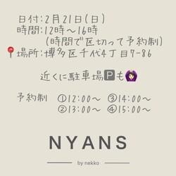 動画愛護団体NYANS 千代シェルター譲渡会のお知らせ