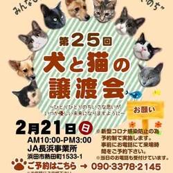 第25回犬と猫の譲渡会